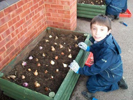 Gardening-Photo-4