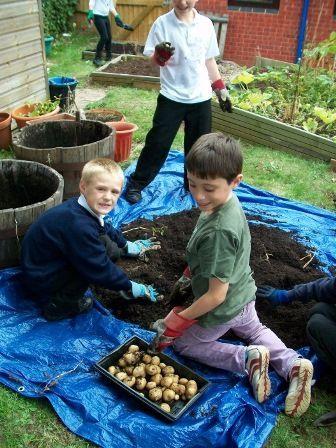 Gardening-photo-5