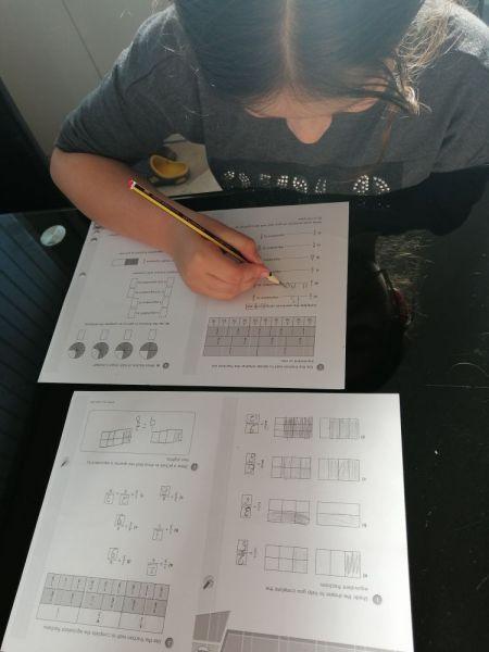 Lana-fractions-2