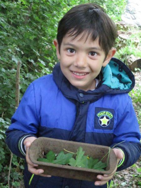 thumbnailAlex-forest-school